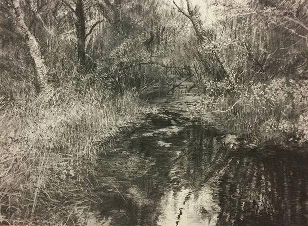 """Lagoon"" by Michael Wann at the Chimera gallery, Mullingar, Co Westmeath , Ireland."