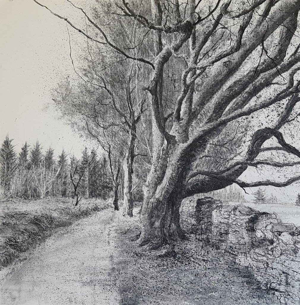 'Mountain Path' (1) by Michael Wann at the Chimera Gallery, Mullingar, Co Westmeath, Ireland