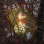 'Life Force' by Jennifer Balkan at the Chimera Gallery, Mullingar , Co Westmeath, Ireland