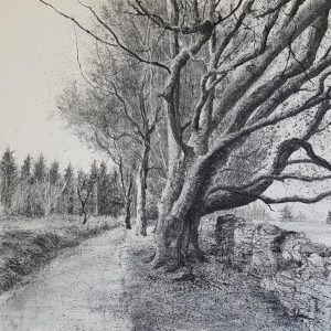 'Mountain Path'(i) Charcoal on Canvas 60x60cm €2200